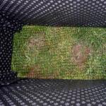 Borb Oasyst (133 x 83 x 59 cm) égetett magaságyás vakondhálóval