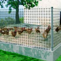 Nortene Avinet 36 könnyített műanyag kerítés