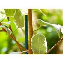 Nortene Split  Bamboo festett bambusz pálcák, 0,4m, Zöld
