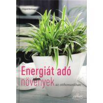 Energiát adó növények az otthonunkban Irmgard Brottrager