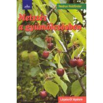 Heidrun Holzförster Metszés a gyümölcsösben (fűzött)