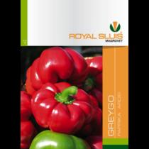 Royal Sluis Paprika Greygo vetőmag 0,4g