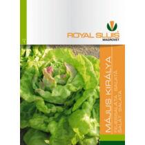 Royal Sluis Saláta Május Királya vetőmag 2,5g