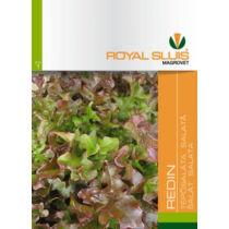 Royal Sluis Saláta Redin vetőmag 1,5g