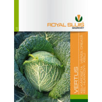 Royal Sluis Káposzta Vertus Kelkáposzta vetőmag 1,5g