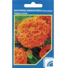 Budapesti Kertimag Nagyvirágú Bársonyvirág narancssárga vetőmag 200 szem