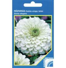 Budapesti Kertimag Rézvirág Dahlia virágú,fehér vetőmag 100 szem