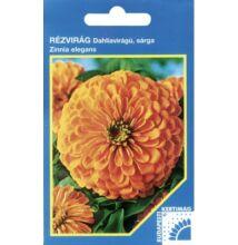 Budapesti Kertimag rézvirág Dahlia virágú sárga  vetőmag 100 szem