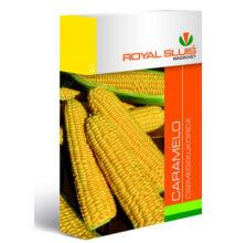 Royal Sluis Kukorica Caramelo vetőmag