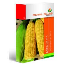 Royal Sluis Kukorica Mirus F1 vetőmag 50g
