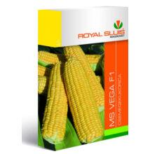 Royal Sluis Kukorica MS Vega F1 vetőmag