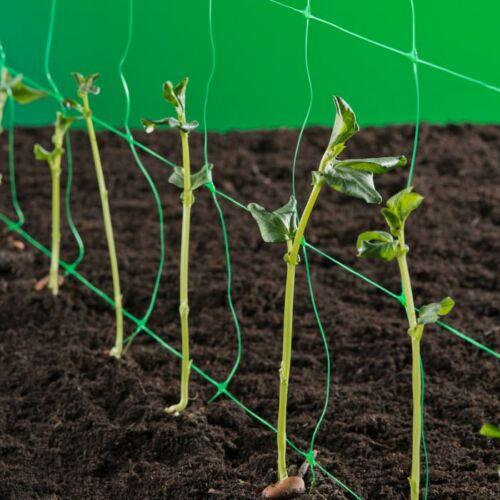 Nortene Trellinet növénytartó háló. uborkaháló,rácsméret  150 x 150 mm