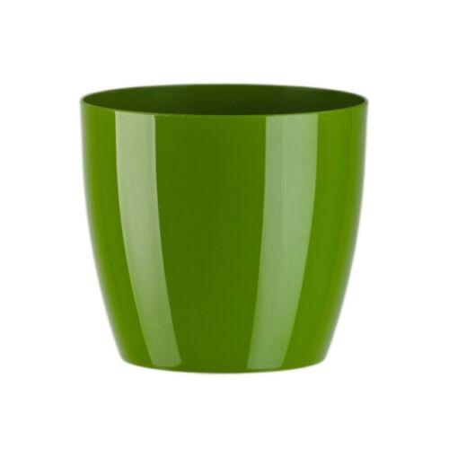 Zöld műanyag Aga kaspó, 6 x 14,5 cm